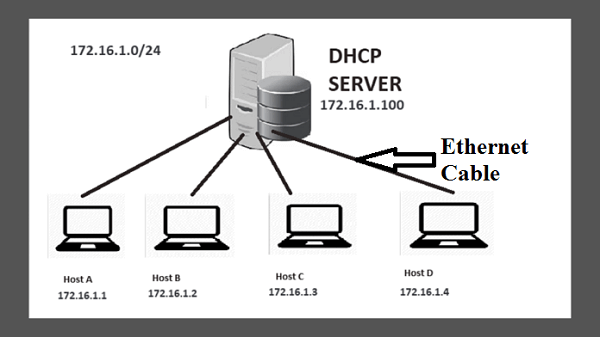 dhcp option